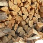 Amenzi drastice pentru lemnele fără documente de proveniență