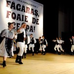 """Invitațiile la Festivalul """"Făgăraș Foaie de Ceapă"""" s-au epuizat într-o singura zi"""