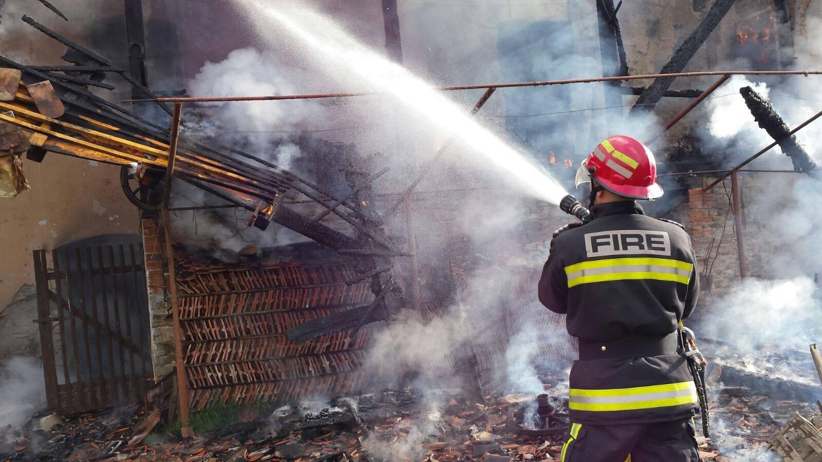 foc halmeag 2