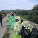 """Sute de saci cu gunoaie, strânși de voluntari, la Făgăraș, în cadrul """"Let's do it, România"""""""
