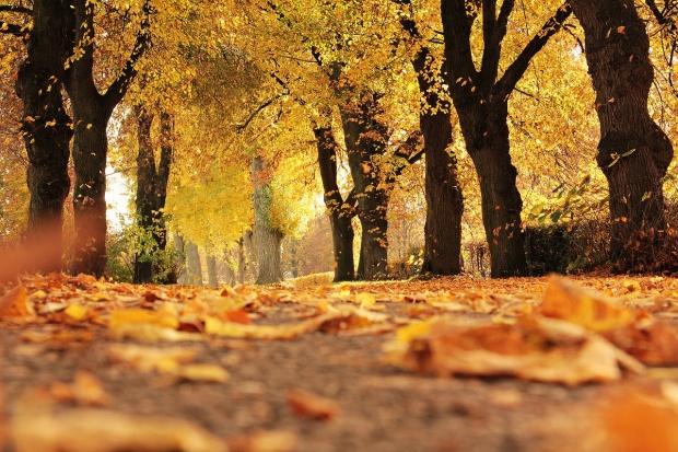 România trece la ora de iarnă, cu temperaturi de primăvară
