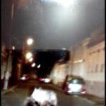 Video. Ursoaică cu pui, pe străzile din Făgăraș