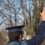 Polițiști amenințați în Veneția de Sus. Conflict aplanat cu un foc de avertisment, cu arma din dotare