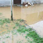 Casă inundată în Făgăraș. Intervin pompierii