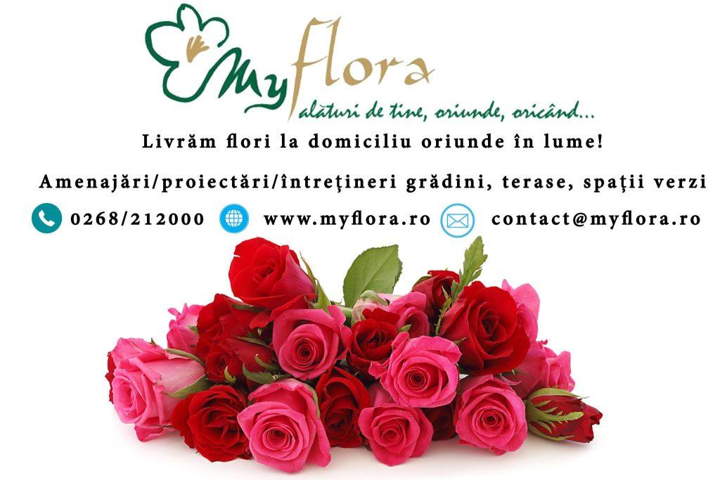 my-flora