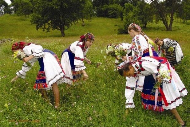 sanzienele-sau-dragaica-traditii-obiceiuri-si-superstitii-459296
