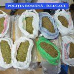 Reținut pentru trafic de droguri de risc
