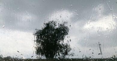 Ploi și vânt până joi