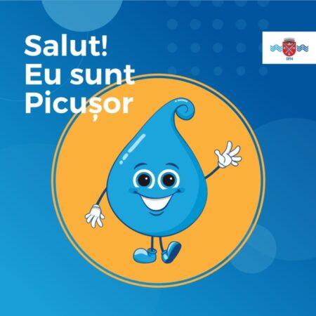 identitate-picusor1