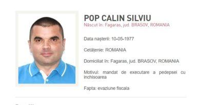 pop calin